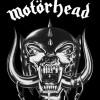 Titre de Motörhead tiré du dernier album Motörizer que vous connaissez probablement si vous êtes fans. Ils viennent de sortir le clip de cette chanson À voir Site: imotorhead