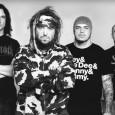 Après l'énorme premier album du groupe, Cavalera Conspiracy nous remet une autre dose en nous confirmant la fin de l'enregistrement du futur album. Logan Mader c'est encore occupé de l'enregistrement...