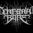 """Genre: Death métal /grindcore / female voice Origine: U.K (Glasgow) Label: Earache Records Membres: Simone «Som» Pluijmer: chant Paul McGuire: guitare Kyle Rutherford: basse Allan """"McDibet"""" McDonald: batterie Une petite..."""